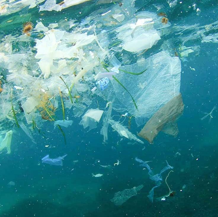 371885-Humans buy 1 million plastic water bottles per minute.-b14cd8-original-1606828720